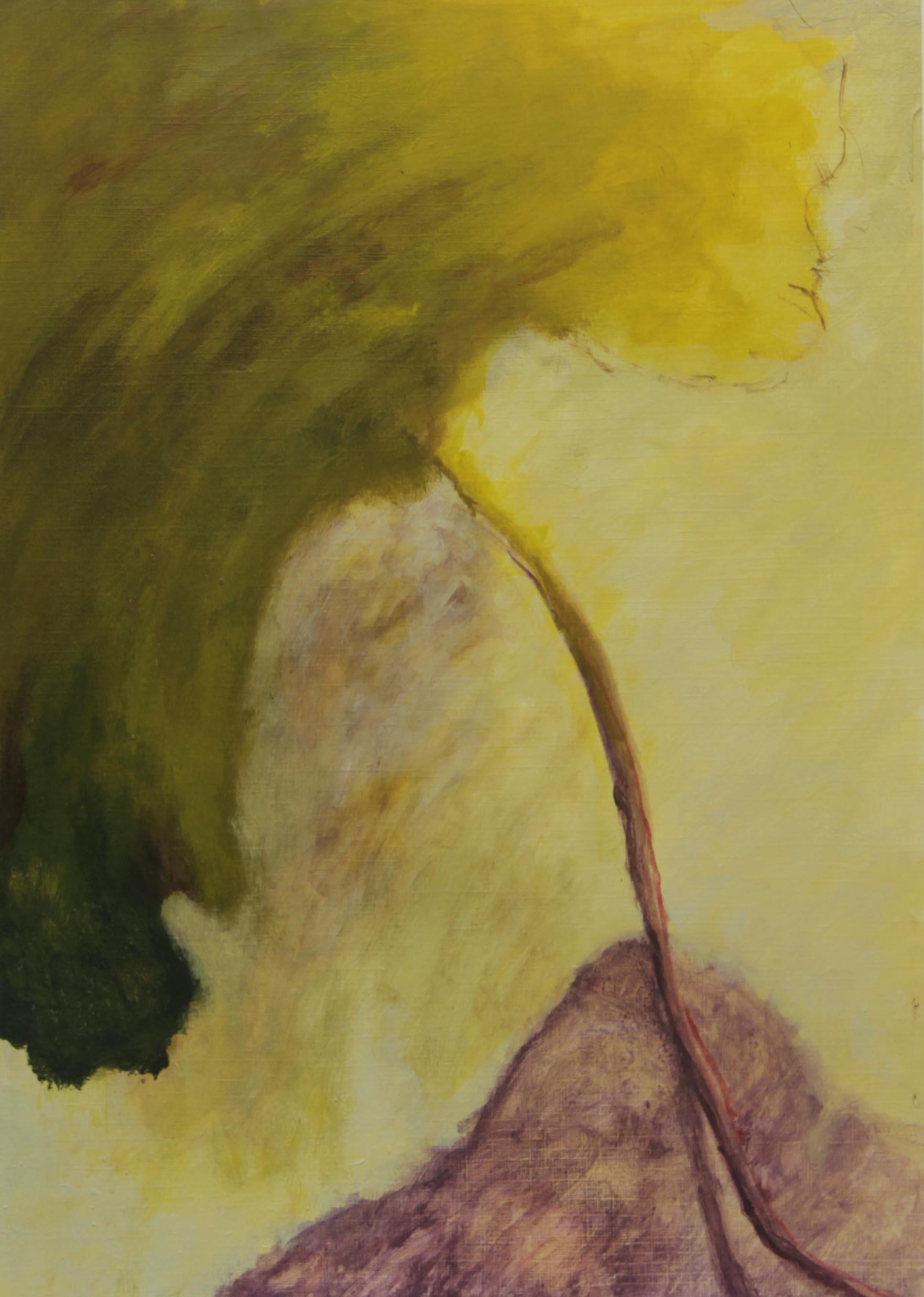 Helen Hue, 35x25