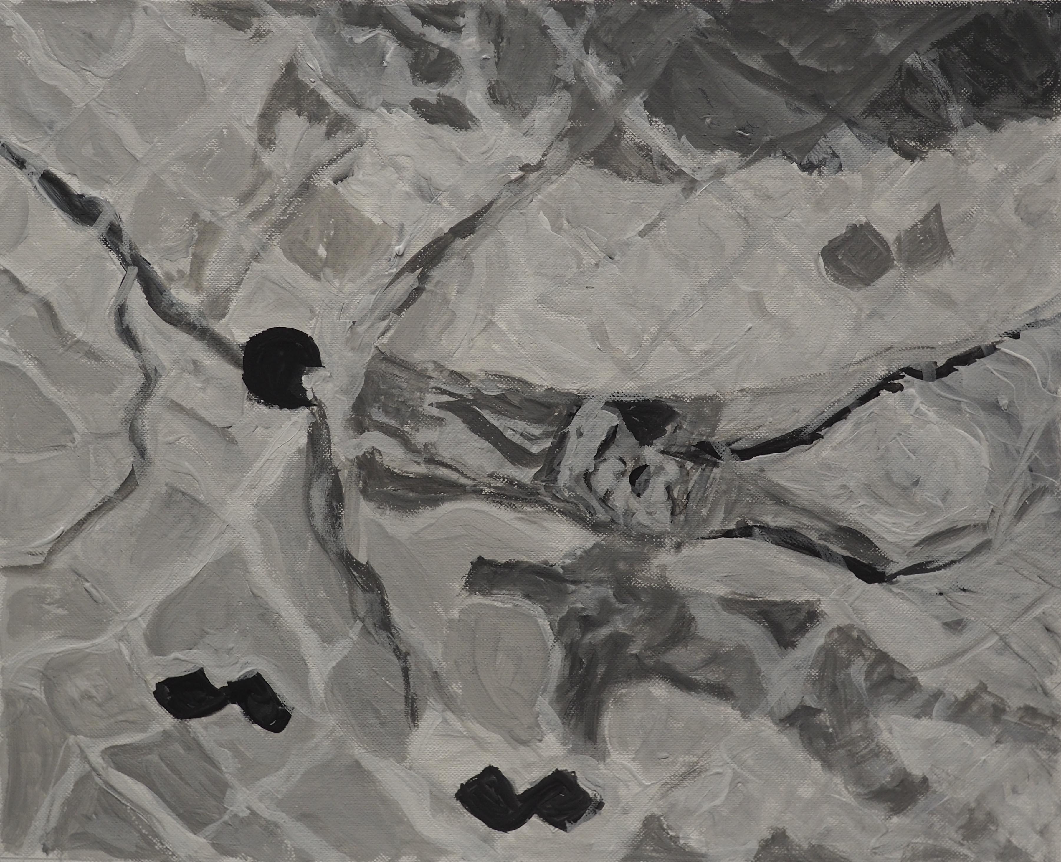 Quacchia Antonella, 26x32