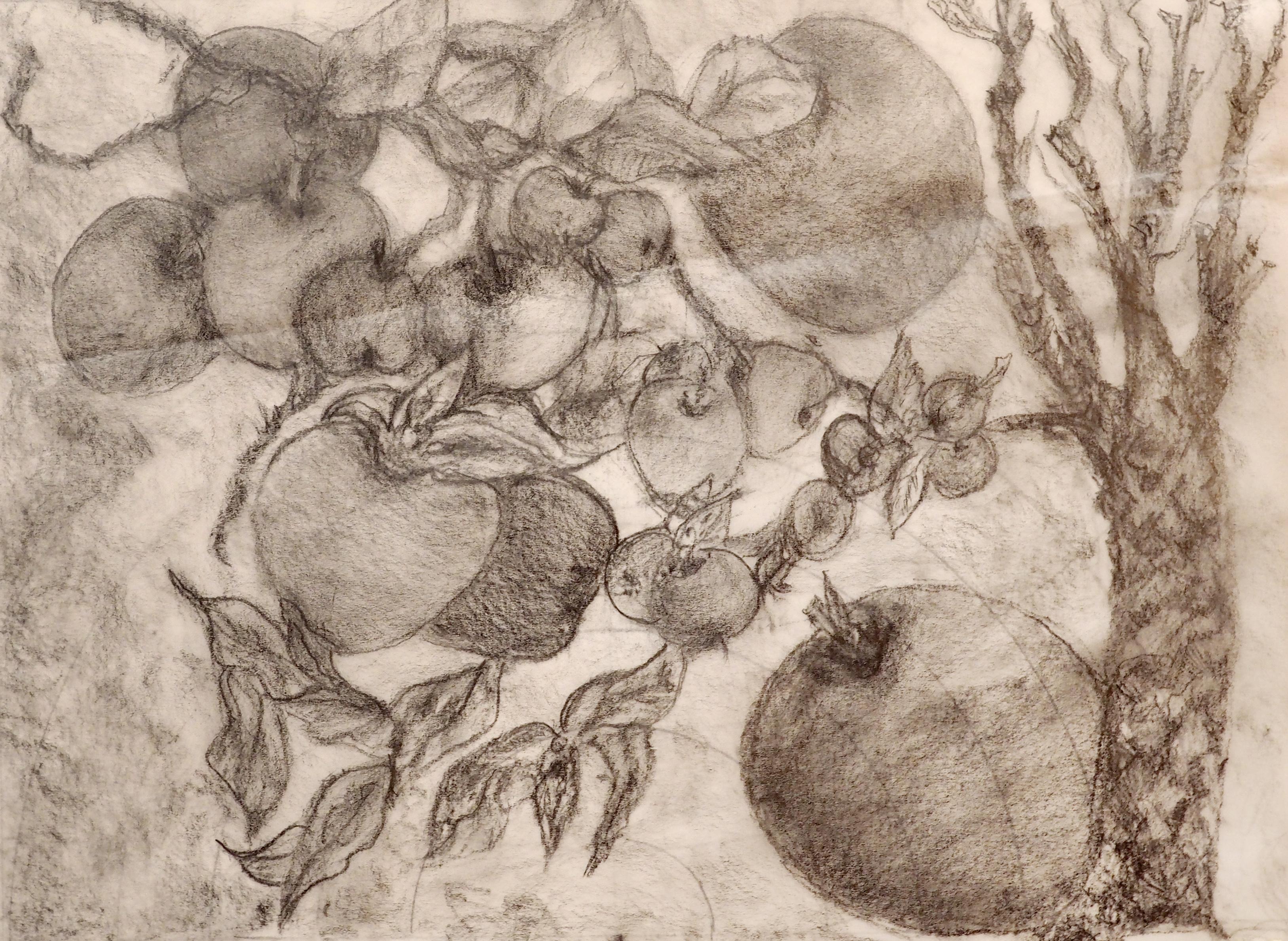 Manuela Gilieron, crayon, 18x24
